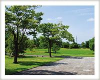 ゆうひみ公園
